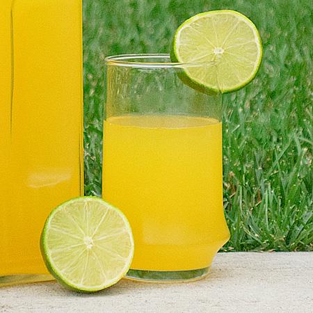 Citrus Summer Cocktails : citrus summer cocktail