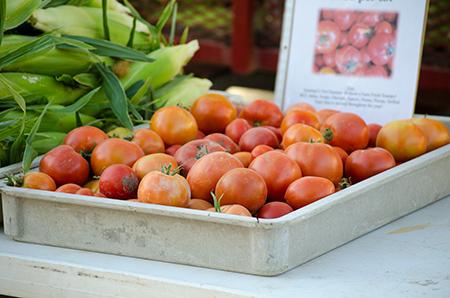 Farmers Market Aug 2013 - 002