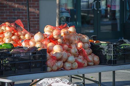 Farmers Market Aug 2013 - 009