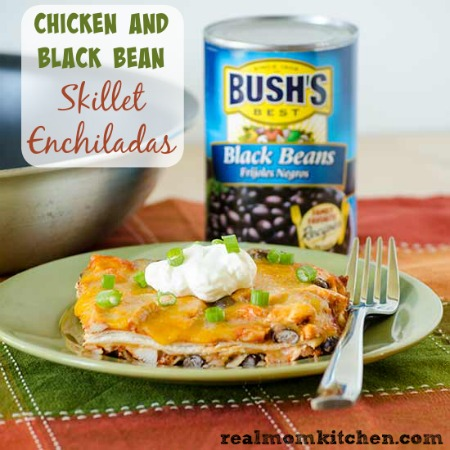 Chicken and Black Bean Enchiladas with Gooey Jack Cheese recipes