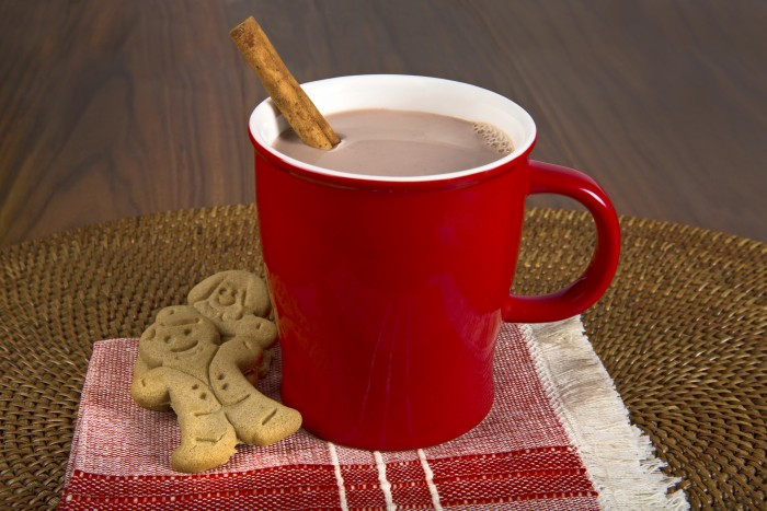 TruMoo Gingerbread Hot Chocolate