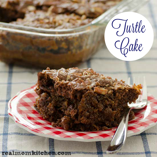 Turtle Cake | realmomkitchen.com