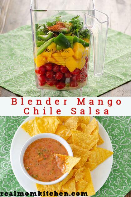 Blender Mango Chili Salsa   realmomkitchen.com